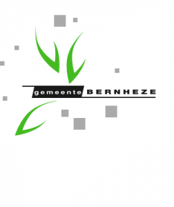 Bewindvoering in Heesch. Schuldhulpverlening in Heeswijk-Dinther, Nistelrode, Vorstenbosch en Loosbroek